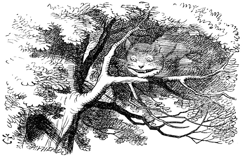 The disappearing Cheshire Cat