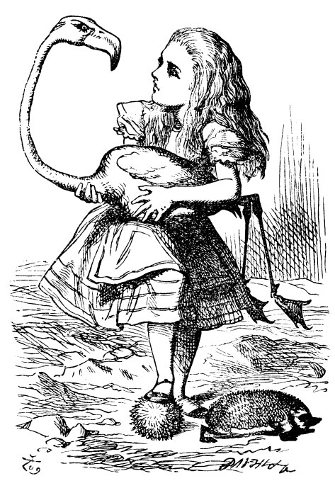 Alice with flamingo