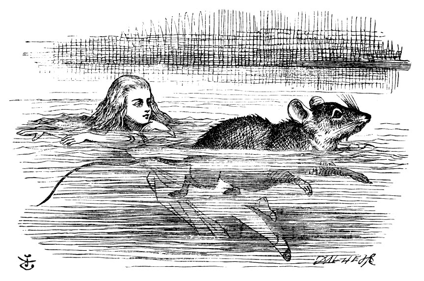 Alice swimming with the mouse