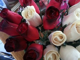 2-Dozen-Wooden-Roses-Red-with-Black-Tip-Creme-Colored-Little-Chicago-Distributing-0-0