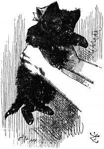 Alice holding the red kitten