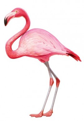Creative-Converting-Jointed-Party-Wall-Decor-45-Inch-Luau-Flamingo-0