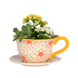Daisy-Fields-GARDEN-TEACUP-PLANTER-0