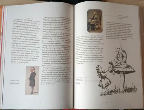 "a page from the book ""Alice's Adventures in Wonderland decoded"""