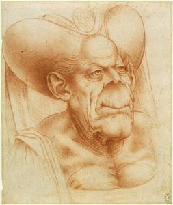 drawing by Francisco Melzi, after Leonardo da Vinci